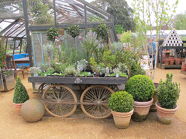DAY OUT AT THE PETERSHAM NURSERY