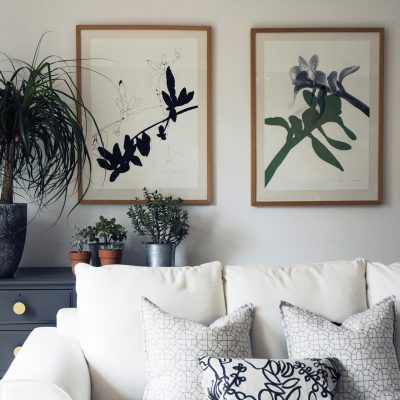 botanical poster, botanical art print