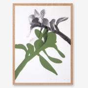 botanical art print, botanical poster