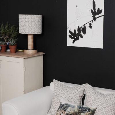 lampshade and cushion