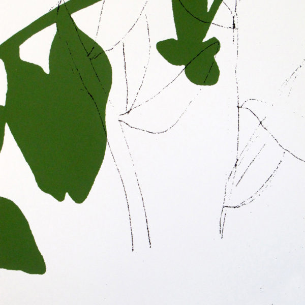 leaf art print, botanical poster