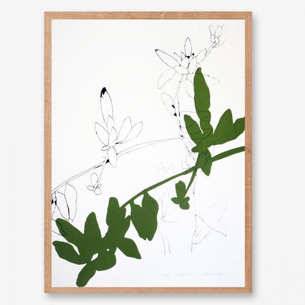 leaf art print, botanical poster