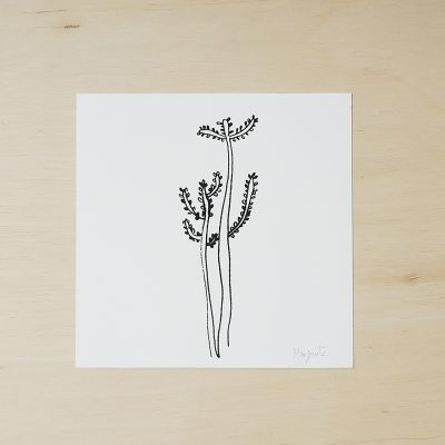 succulents prints, black and white art print