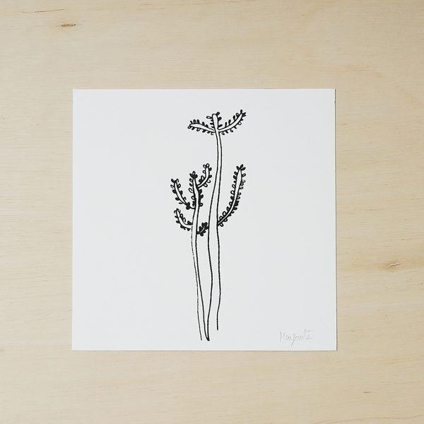 succulents prints, black and white art print