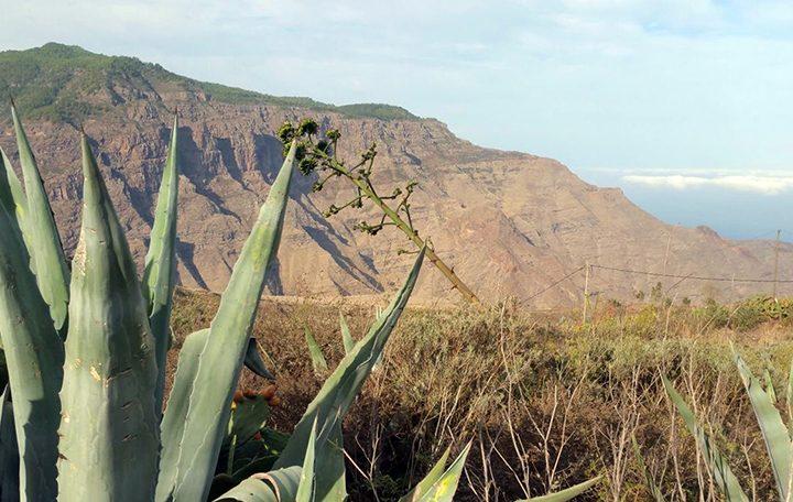 Discovering Gran Canaria – Bañaderos | El Confital